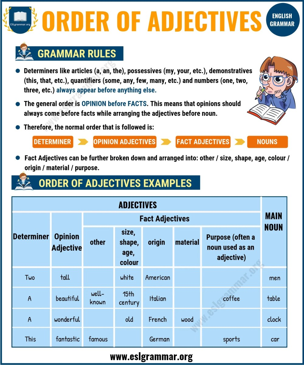 medium resolution of Adjectives: 5 Types of Adjectives with Definition \u0026 Useful Examples - ESL  Grammar