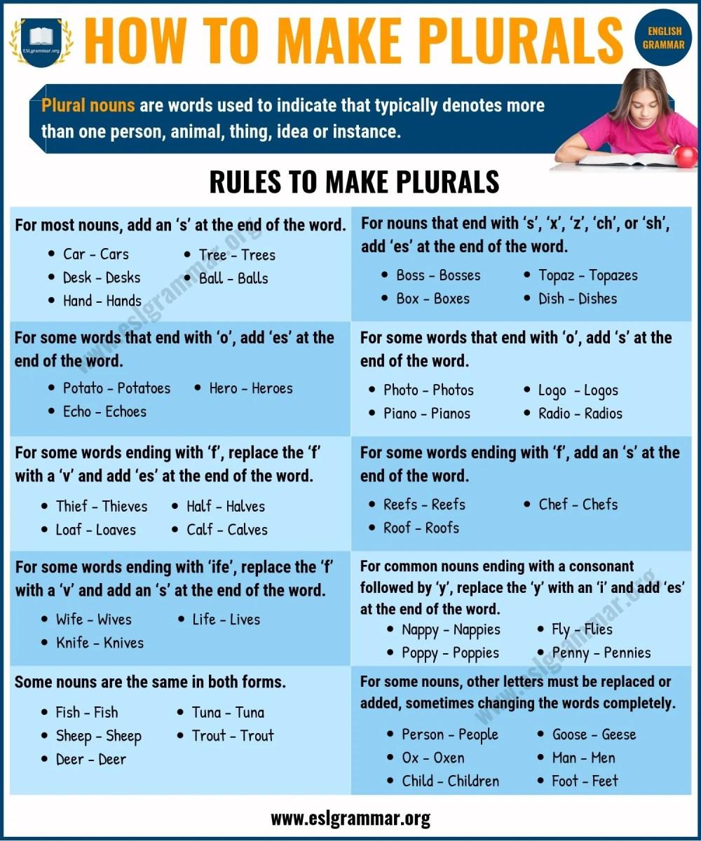 medium resolution of WarmUp 6 Nouns Irregular Plural Nouns that Change Form - induced.info