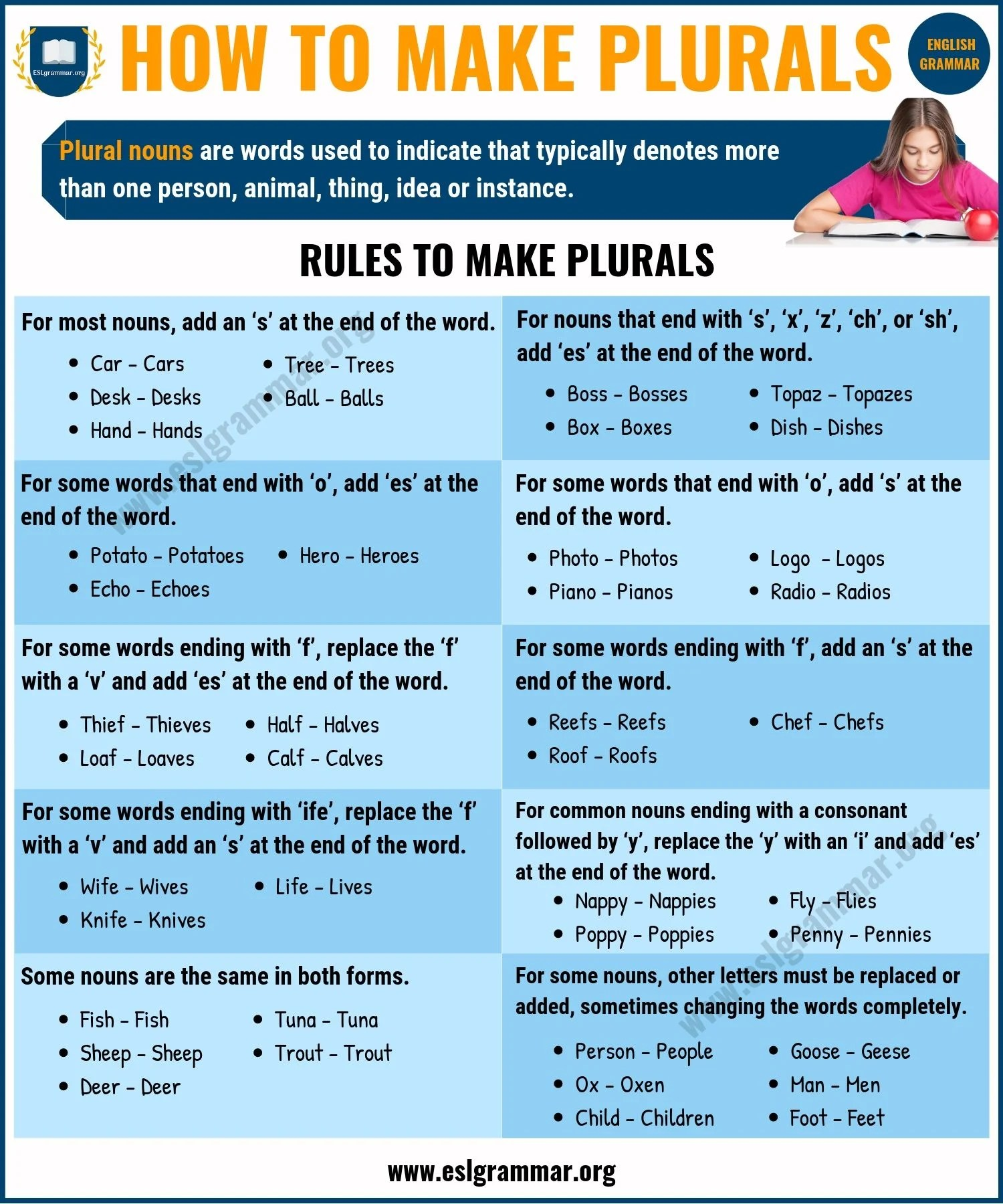 hight resolution of WarmUp 6 Nouns Irregular Plural Nouns that Change Form - induced.info