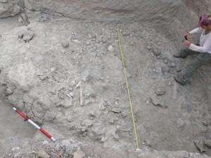 El yacimiento Sam Howard Korongo, donde se hallaron los restos del niño de Olduvai.