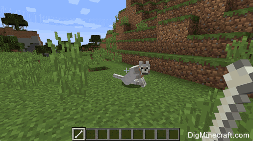 How to Tame a Wolf Minecraft