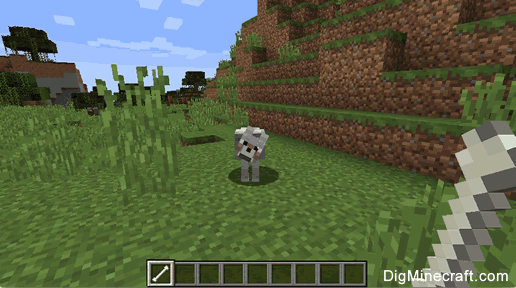How to Tame a Wolf in Minecraft
