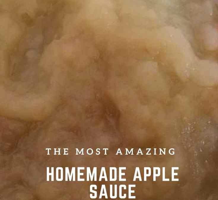 Bobby's Homemade Apple Sauce