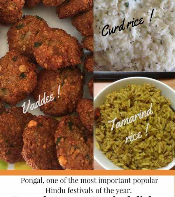 Pongal Harvest Festival