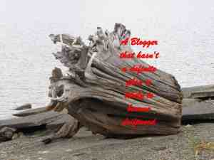 A BLOGGER that hasn't a definite plan is likely to become driftwood