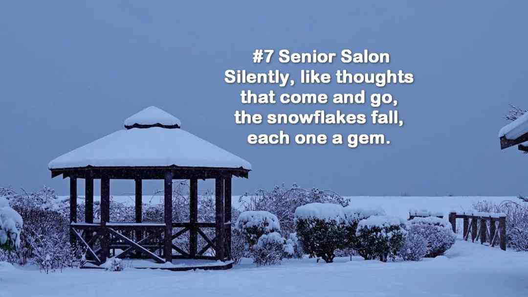#7 SENIOR SALON 2019 Silently, like thoughts that come and go, the snowflakes fall, each one a gem