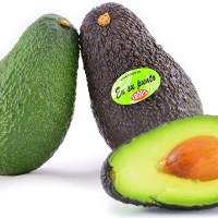 Aguacates-trops