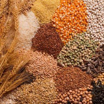 categoria cereales 341x341 1