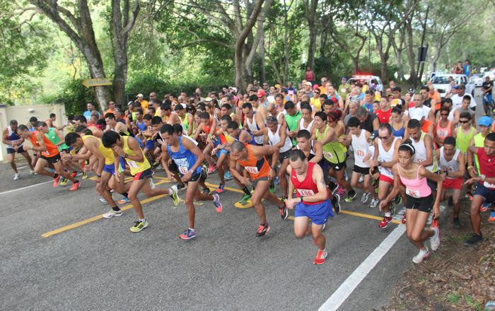 Coamo está listo para el Festival Gastronómico Artesanal y su Medio Maratón San Blas