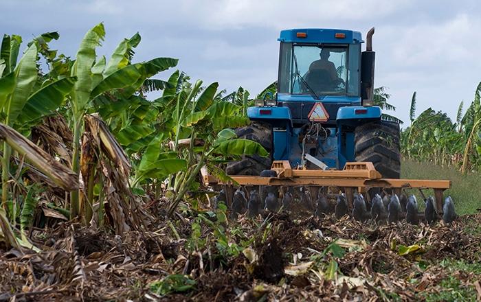 Firman Orden Ejecutiva que brinda beneficio contributivo a los agricultores