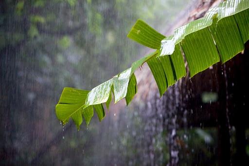 Depresión tropical Grace pasa por Puerto Rico sin provocar daños graves