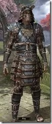 Akaviri Iron - Male Front
