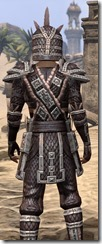 Argonian Full-Leather - Male Close Rear