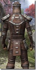 Argonian Iron - Male Close Back