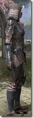 Assassin League Iron - Female Side