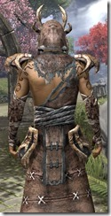 Barbaric Homespun Robe - Male Close Back