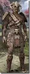 Barbaric-Iron-Male-Front_thumb.jpg