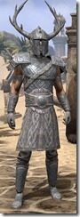 Bloodforge-Iron-Male-Front_thumb.jpg