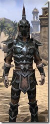 Dark Elf Leather - Male Close Front