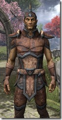 Dunmer Rawhide - Male Close Front