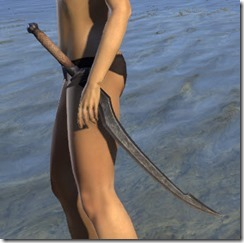 Abah's Watch Iron Sword