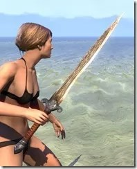 Akaviri Dwarven Sword 2