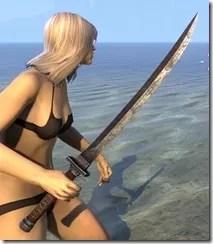 Akaviri Iron Sword 2
