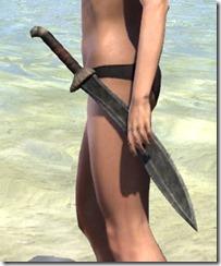 Argonian Steel Sword