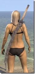 Assassin's League Iron Greatsword 2