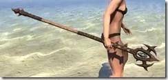 Barbaric-Hickory-Staff-2_thumb.jpg