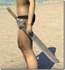 Mercenary Iron Sword