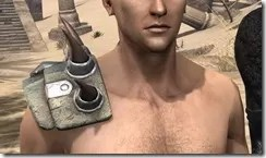 Blood-Spawn-Pauldrons-Male-Front_thumb.jpg