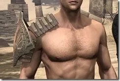 Engine-Guardian-Pauldrons-Male-Front_thumb.jpg