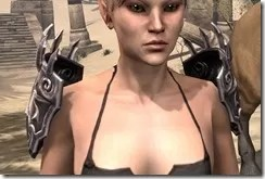 Stormlord-Pauldrons-Female-Front_thumb.jpg