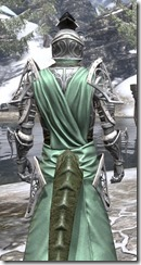 Apostle Homespun - Argonian Male Robe Close Rear