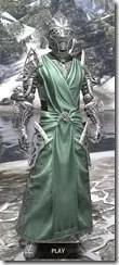 Apostle Homespun - Argonian Male Robe Front