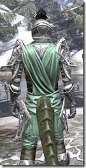 Apostle Homespun - Argonian Male Shirt Close Rear