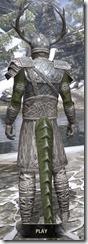 Bloodforge Iron - Argonian Male Rear