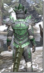 Buoyant Armiger Iron - Argonian Male Close Rear