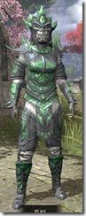 Buoyant Armiger Iron - Khajiit Female Front