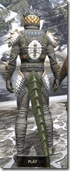 Dead-Water Iron - Argonian Male Rear