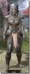Welkynar-Rawhide-Khajiit-Female-Front_thumb.jpg