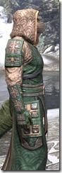 Akaviri Homespun - Argonian Male Robe Close Side