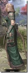 Akaviri Homespun - Khajiit Female Robe Side