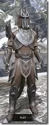 Aldmeri Dominion Homespun - Argonian Male Shirt Front