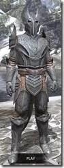 Aldmeri-Dominion-Iron-Argonian-Male-Front_thumb.jpg