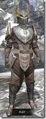 Aldmeri-Dominion-Rawhide-Argonian-Male-Front_thumb.jpg