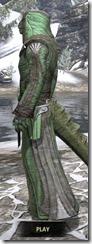Ancient Elf Homespun - Argonian Male Robe Side