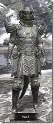 Ancient-Elf-Iron-Argonian-Male-Front_thumb.jpg