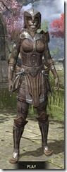 Ancient-Elf-Rawhide-Khajiit-Female-Front_thumb.jpg